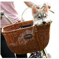 Dog-Bike-Basket